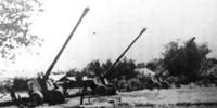 Pháo binh Việt Nam với Đại thắng mùa Xuân 1975