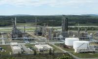 Chọn nhà đầu tư chiến lược: Lọc hóa dầu Bình Sơn có nhiều sự lựa chọn