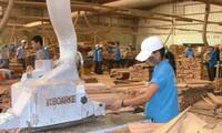 Xuất khẩu gỗ sẽ lập kỷ lục?