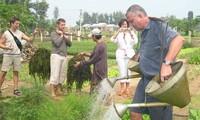 """Du lịch nông nghiệp: Bao giờ """"gà đẻ  trứng vàng""""?"""
