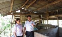 Quảng Nam: Tích cực nâng cao hiệu quả vốn chính sách