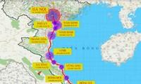 Chọn hướng tuyến cho đường sắt cao tốc Bắc – Nam: Yếu tố đảm bảo kỹ thuật là ưu tiên số 1
