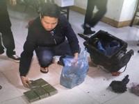 Đắk Lắk: Vận chuyển 22 bánh heroin với tiền công 50 triệu đồng
