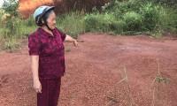 Đắk Nông: Vợ chồng cựu chiến binh đã mất đất còn bị phạt tù oan?