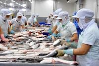 Giá trị xuất khẩu thủy sản đạt 8,1 tỷ USD trong 11 tháng qua