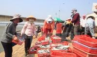 Khởi tố cán bộ thôn 'vòi tiền' để làm hồ sơ đền bù vụ sự cố Formosa