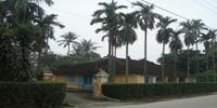 Nỗ lực bảo tồn nhà vườn Huế