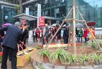 Bộ Tư pháp khởi đầu năm làm việc bằng Tết trồng cây
