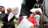 Xuất cấp gần 160,600 tấn gạo cứu đói