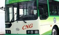 Từ 1/8, Hà Nội vận hành 3 tuyến xe buýt sử dụng nhiên liệu sạch