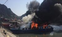 Cháy tàu cao tốc tại Cảng Cái Rồng