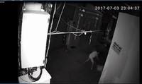 Rùng mình, người phụ nữ bị hàng xóm đâm trong đêm