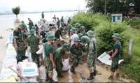 Nước sông Bùi lên đỉnh điểm, quân dân Thủ đô căng mình giữ đê