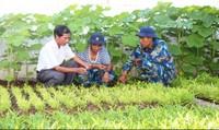Ứng dụng nông nghiệp hữu cơ tại huyện đảo Trường Sa