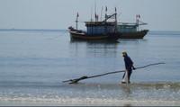 Thu hồi tiền 500 trường hợp kê khống thiệt hại môi trường biển tại Quảng Bình