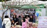 Sôi động Liên hoan Ẩm thực quốc tế lần thứ VI