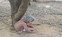 Phẫn nộ cảnh cụ bà trần như nhộng bị trói ở gốc cây