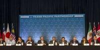 Việt Nam trong TPP: Thành viên yếu nhất, đòi hỏi cao nhất