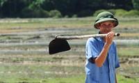 Tìm hướng đi mới cho nông dân thời hội nhập