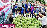 Giải cứu nông sản: Điểm yếu cố hữu của ngành Nông nghiệp và Công Thương