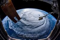 Thủ tướng yêu cầu ứng phó khẩn cấp bão số 6 và mưa lũ