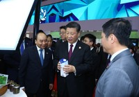 TH tìm đường đưa sữa tươi sạch vào thị trường Trung Quốc