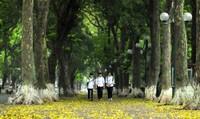 Những trải nghiệm ở Hà Nội làm sống dậy thời tuổi trẻ