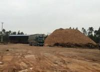 Xử lý xưởng gỗ dăm không phép: Chỉ đạo của UBND tỉnh có được tôn trọng?