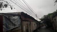 Đã có phương án xử lý hành lang an toàn lưới điện ở Long Biên