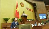 Doanh nghiệp nước ngoài có phải đặt cơ quan đại diện khi kinh doanh internet tại Việt Nam?