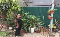 Xã Tân Triều, Thanh Trì, Hà Nội: Gánh cháo quê theo hầu cửa quan