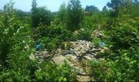Phát hiện Formosa đổ chất thải tại một trang trại của người dân