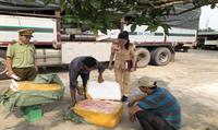 CSGT Thanh Hóa liên tiếp bắt giữ xe vận chuyển thực phẩm bẩn