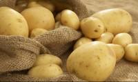 Những sai lầm khi chế biến khoai tây cần phải biết