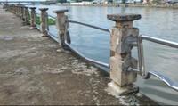 Cần Thơ:  Nguy cơ 'trôi sông' công trình bờ kè hàng chục tỷ đồng