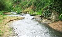 Yên Bái: Nhà máy chế biến nông sản ngang nhiên xả thải vào nguồn nước sinh hoạt