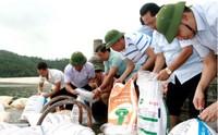 Quảng Ninh: Thả gần 200.000 con cá giống để tái tạo nguồn lợi thủy sản