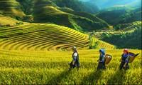 """Cuộc thi viết """"Việt Nam - Vẻ đẹp bất tận"""""""
