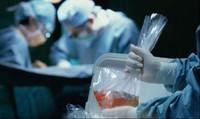 Việt Nam hiện có 7400 người đăng ký hiến tạng