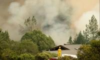Ít nhất 23 người thiệt mạng trong vụ cháy rừng khủng khiếp ở Mỹ