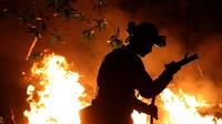 Mỹ: 40 người thiệt mạng trong 1 tuần do hỏa hoạn