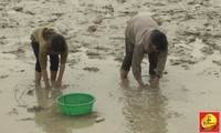 Những mảnh đời bất hạnh ở vùng quê nghèo Quốc Oai