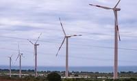 Điện gió: Cơ hội nào cho doanh nghiệp?