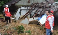 EU viện trợ cho các nạn nhân của bão Damrey tại Việt Nam