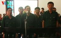 6 cựu chiến binh hầu tòa vì hủy hoại rừng