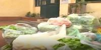 Phát hiện cơ sở biến rau bẩn thành rau an toàn đưa vào trường mầm non