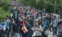 Hầu tòa vì từ chối hạn ngạch tiếp nhận người tị nạn