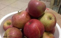 Cả thập kỷ, người tiêu dùng Việt cay đắng vì bị lừa ăn hoa quả Tàu