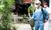 Dịch sốt xuất huyết: Công tác diệt bọ gậy chưa thực sự hiệu quả