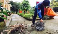 Báo động tình trạng đặt bẫy săn bắt thú rừng